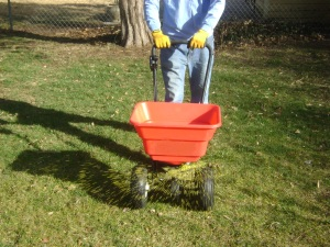 Weed Control, Fertilizer Treatments, SK Lawn Care, Lawn Service, Landscape Service